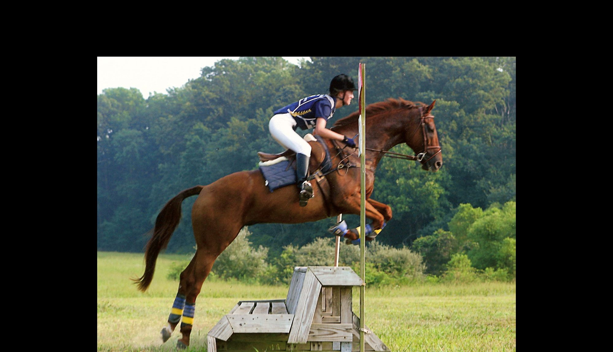 Rider jumping a cross country fence on a chestnut gelding